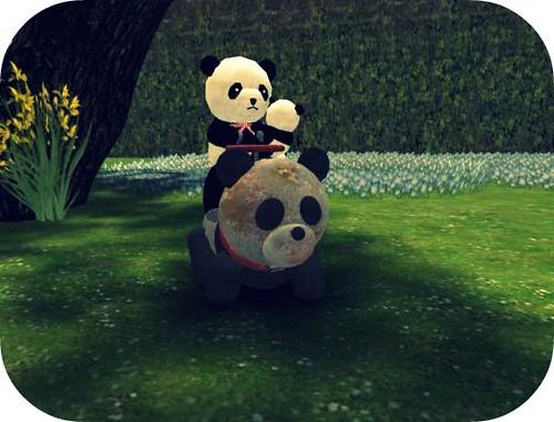 Panda riding panda