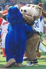 Durham Bulls - Mascot Love