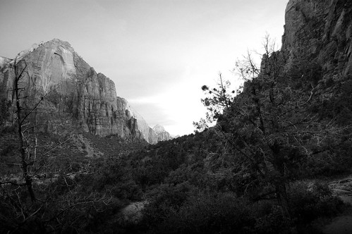 The Grotto, Zion National Park