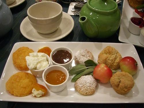 podunk nibbler tea