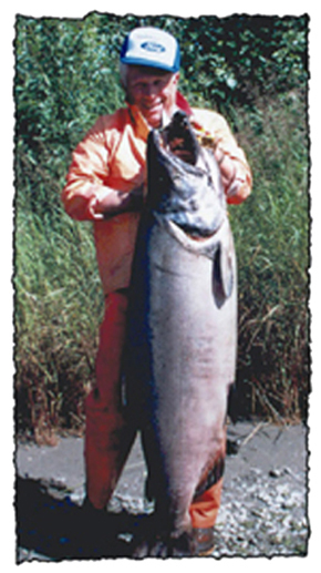 Les Anderson's World record king salmon
