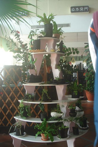 竹碳容器盆栽