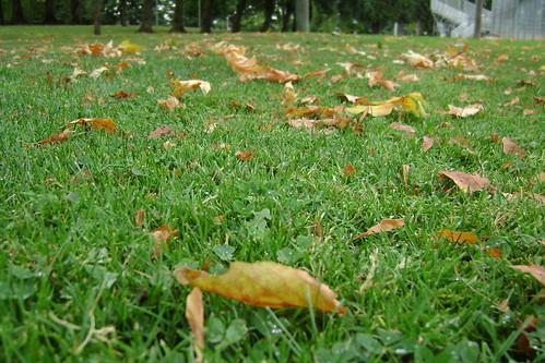 Fall already?