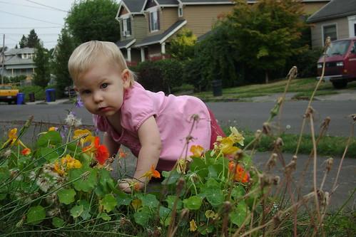 baby and nasturtiums
