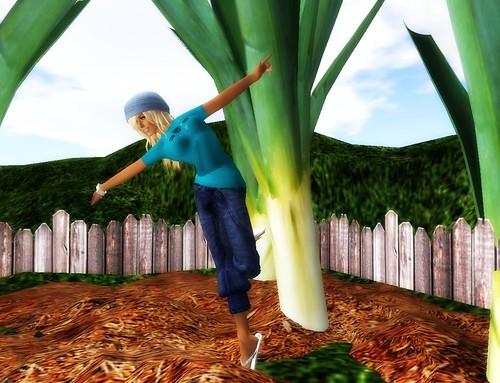 Tiptoe through the garden :)