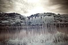 The Wye Valley & Tintern Abbey