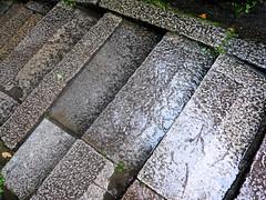 Rain, at last - Fushimi Inari
