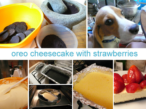 step by step cheesecake