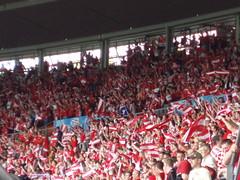 austria flag's
