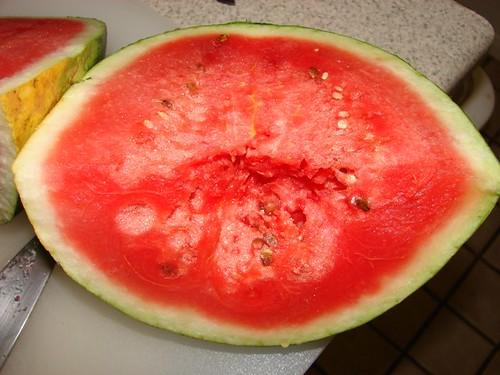 Sugar Bowl Watermelon, Grown Organically