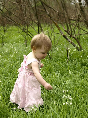 Tilly picking flowers