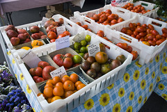 Tomatoes, at last