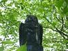 Manchester Grammar Owl
