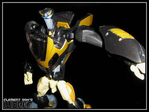 Animated Prowl