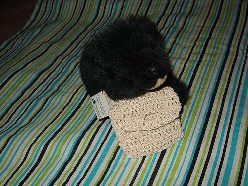 Luna the Moon bear (teddy) and her crocheted bag