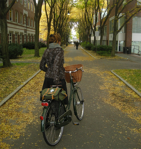 """Autumn Passageway"" by lovely_bicycle"