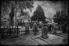 Christ Church Cemetery Textured 2