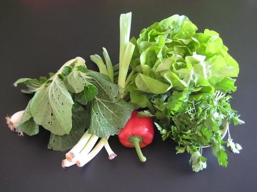 Amelis'Hof organic CSA vegetables week 21, 2011