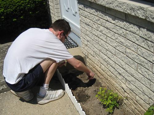 Craig planting green beans