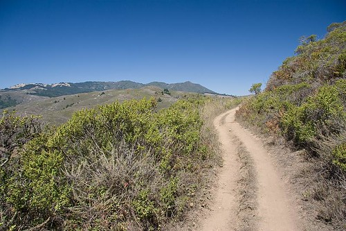 Middle Green Gulch Trail by you.