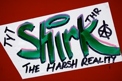 Shirk The Harsh Reality