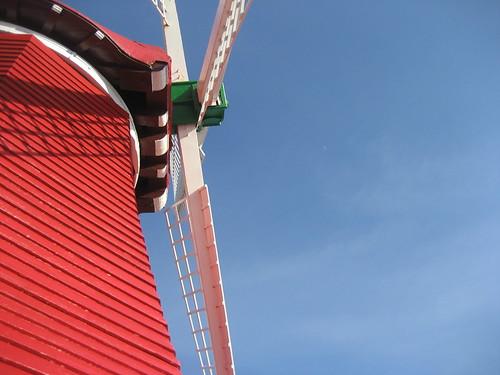 Old Windmill Aruba