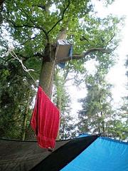 Waldbesetzung Kelsterbach Juni 2008 (16)