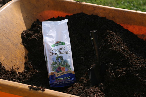 Compost and bone meal