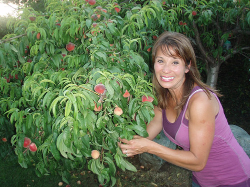 Janet and her peach tree