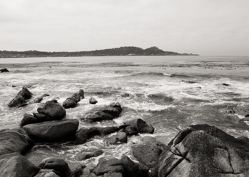 Point Lobos by you.