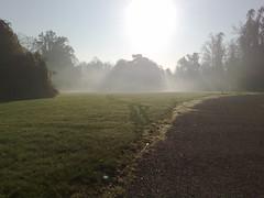 Nebbia al Parco
