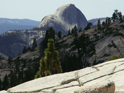 Half-Dome depuis Olmsted Point