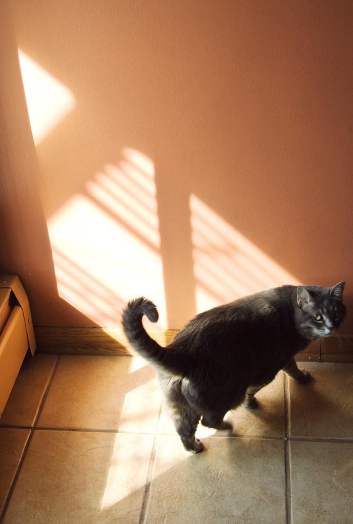 catway