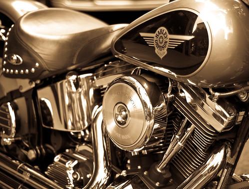 Harley Series - 1of 8
