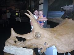 Dinosaur Park (6)