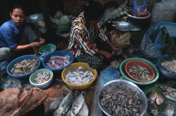 Women selling fish in Cambodia - Photo : Masaru Goto / World Bank
