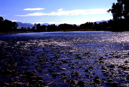 Yellowstone River. (Fuji Provia 100F. Nikon F100. Epson V500.)
