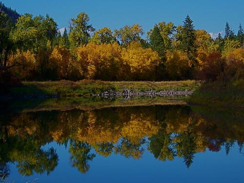 Autumn along the Clark Fork