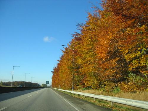 On the way to Malmö