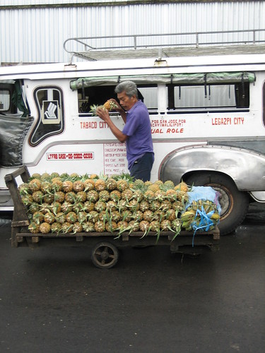 Tabaco Legazpi City fruit vendor peddler unloading pineapples from jeepney to his cariton Pinoy Filipino Pilipino Buhay  people pictures photos life Philippinen  菲律宾  菲律賓  필리핀(공화�) Philippines pinya piña