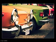 Classic Fiats on Norton Street, Sydney