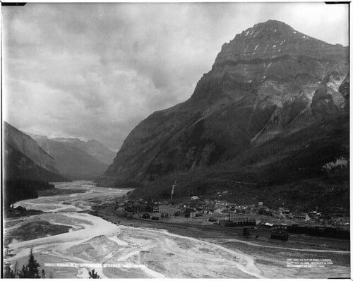 Field and Mount Stephen, BC, 1904 by Musée McCord Museum