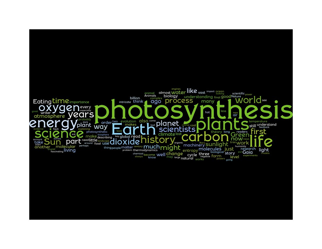 Wordle-cloud of Eating the Sun reviews, as of 081101
