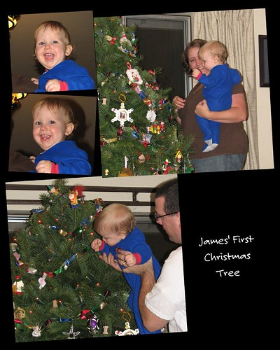 James' first Tree 2008 collage