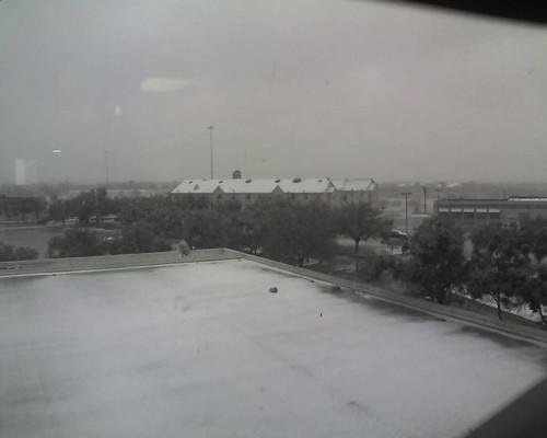 FW Snow