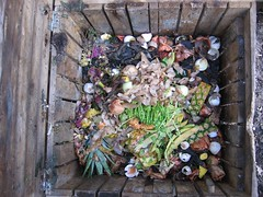 Spring Compost