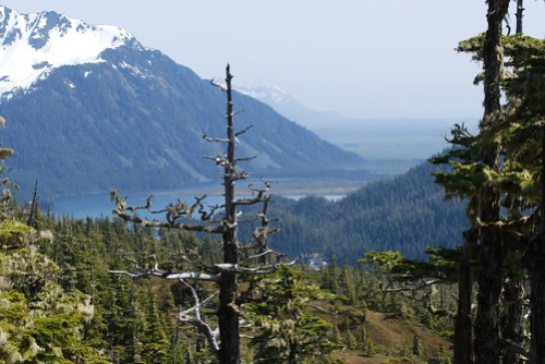 Mt. Eyak Hike Memorial Day - 06