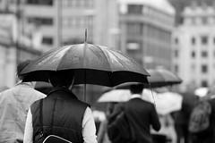 The city in the rain