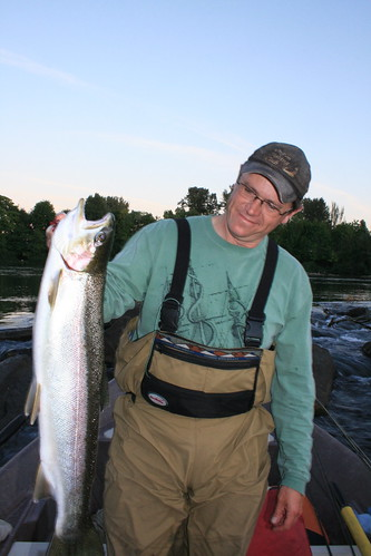 Eugene Town-run steelhead