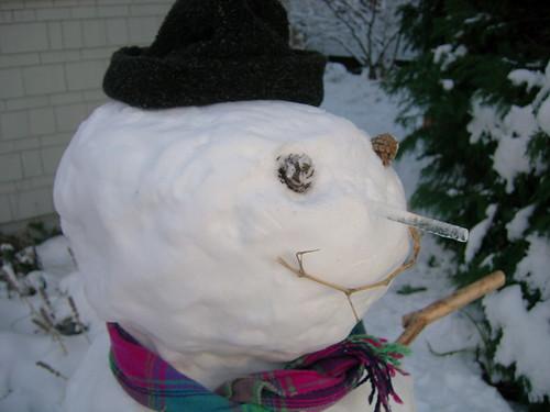 Snowgal
